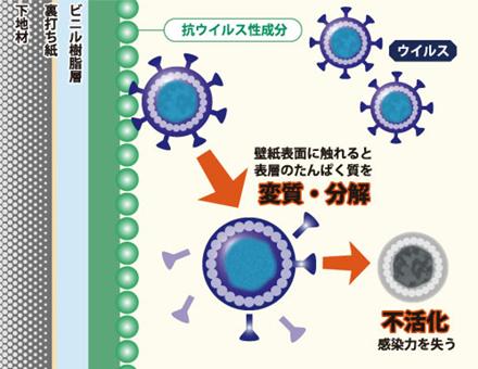 抗菌壁紙(ベガウイルス/ウイルスパンチ)の性能